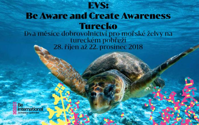 Dva měsíce dobrovolnictví pro mořské želvy na tureckém pobřeží