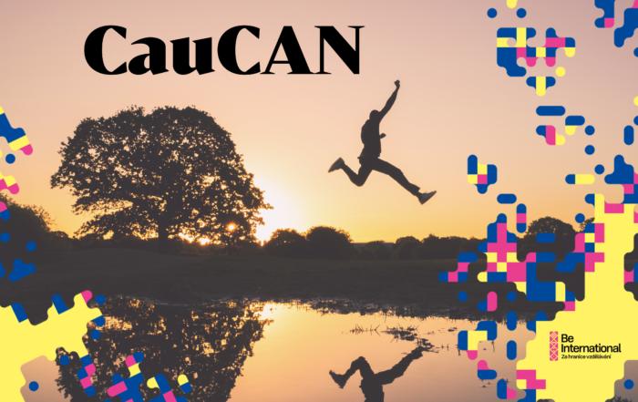 CauCAN